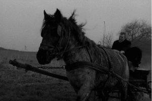 ニーチェの馬